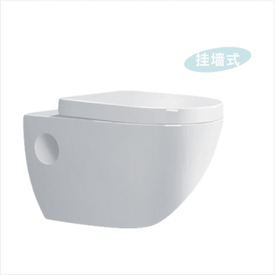 Two piece wall hung toilet G13305